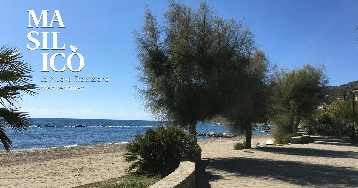 La Dieta mediterranea e la Sua capacità di autocura – Blog Masilicò